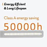 LED Desk Lamp 5 Color Temperatures with 3