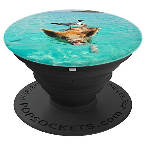 White gray Bird on pig swimming on the beach - PopSockets Grip and Stand for Phones and Tablets