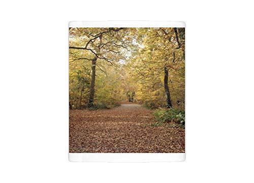 Mug of Sunlight Through Autumn Forest Leaves (18253433) (Light Buckinghamshire)