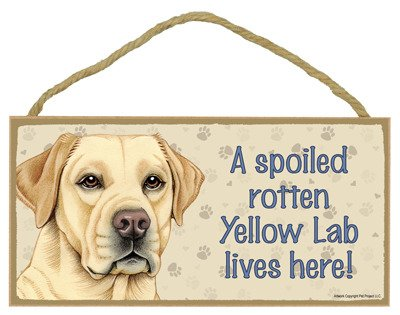 (SJT ENTERPRISES, INC. A Spoiled Rotten Yellow Lab Lives here Wood Sign Plaque 5