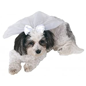 Rubie's Wedding Veil Pet Accessory, Small/Medium