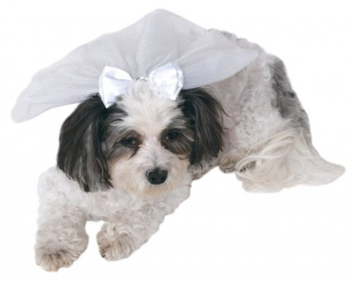 Rubie's Wedding Veil Pet Accessory, Small/Medium -