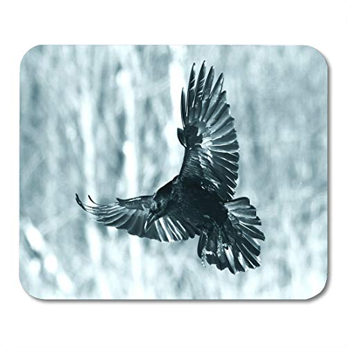 Emvency Mouse Pads Bird Flying Black Raven Corvus Corax in Winter Time Looking for Something to Eat Halloween Mouse pad Mats 9.5