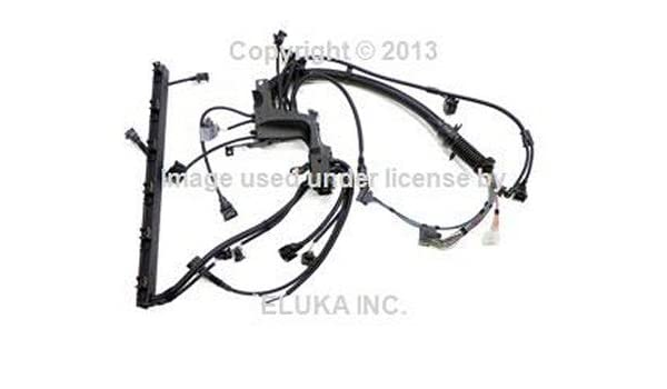 Amazon.com: BMW Genuine Engine Wiring Harness for Engine Module for on