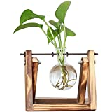 Cumturming Glass Planter Bulb Vase with Retro Solid Wooden Stand and Metal Swivel Holder