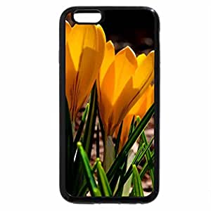 iPhone 6S Plus Case, iPhone 6 Plus Case, Spring flowers