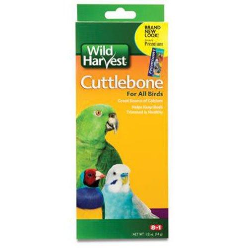 Wild Harvest Cuttlebone For All Birds  C1262