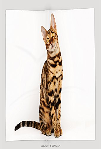 Custom Throw Blanket Bengal Cat 271852916 and Comfortable