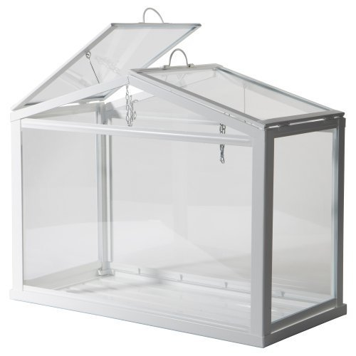 Wardian Case Terrarium -  Ikea Greenhouse, Indoor/outdoor, White