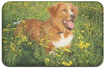 NA Hond Muilkorf Profiel Gras Entree Vloermat Machine Wasbaar Vooringang Tapijt Badmat Keuken Woonkamer Zachte Flanel Stof Antislip Basis