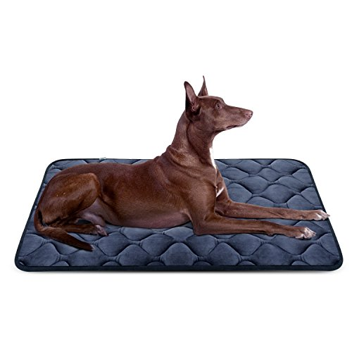 Nap Dog Crate Mat - Dog Bed Mat Washable - Soft Fleece Crate Pad - Anti-Slip Matress for Small Medium Large Pets (Grey L) by HeroDog