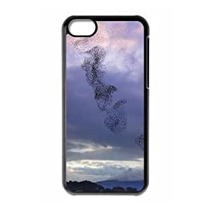 Birds Migration New Fashion Case for Iphone 5C, Popular Birds Migration Case