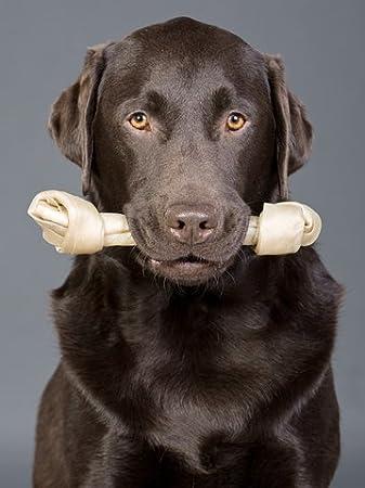 BPS-5064 16cm 12pcs BPS 12pcs Hueso Nudo para Perros Fortalecedor de Dientes Pet Snack Piel de Vacuno Diferente Tama/ños BPS-5062 BPS-5063 BPS-5064 12