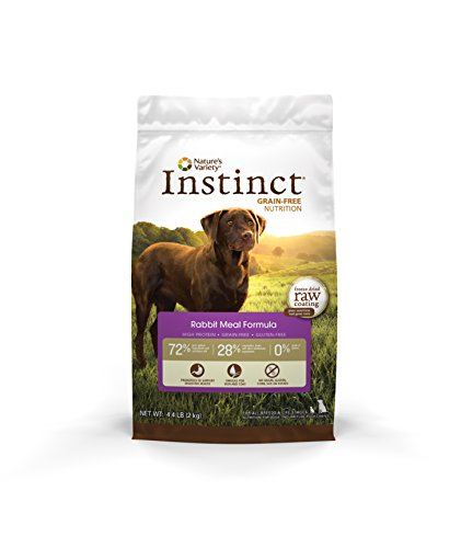 Natural Instinct Dog Food Amazon