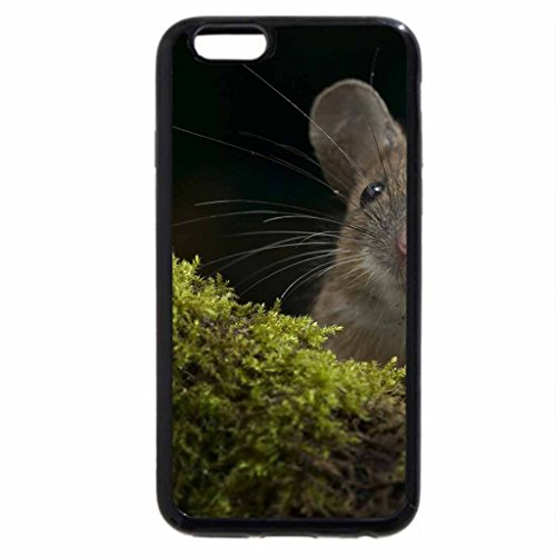 iPhone 6S / iPhone 6 Case (Black) Little mouse
