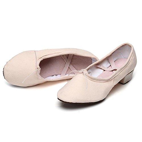 de 1 Baile de Zapatos Baile Latinos Modelo de HIPPOSEUS Salón ES101 Zapatos Rosa Zapatos La Danza de el de Mujeres pqqnHOvwg