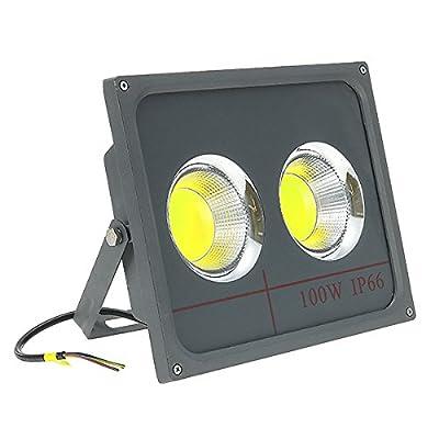 100W LED COB Flood Light Outdoor Waterproof IP66 Garden Spot Lamp AC90-265V (White)