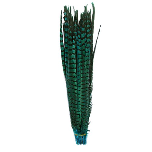 UPC 719970736993, Pheasant Tails feathers,Hgshow 10Pcs plume Products Assorted Natural feathers,About 20-22 inches,50-55cm long