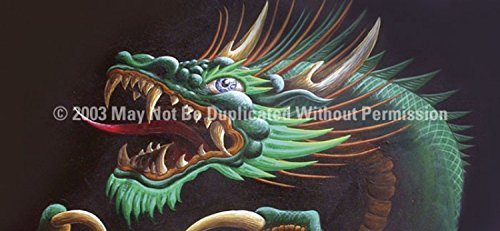 Clearvue Graphics Window Graphic - 30x65 Dragon Head Tattoo - 30 X 65 Dragon