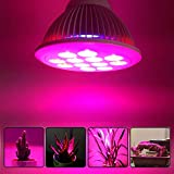 POWERBIO Full Spectrum LED Grow Light for Hydroponic Indoor Plants - Grow Light for Vegetables and Flowers 12W (12W)