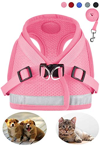 - GAUTERF Dog and Cat Universal Harness with Leash Set, Escape Proof Cat Harnesses - Adjustable Reflective Soft Mesh Corduroy Dog Harnesses - Best Pet Supplies (XX-Small, Pink)
