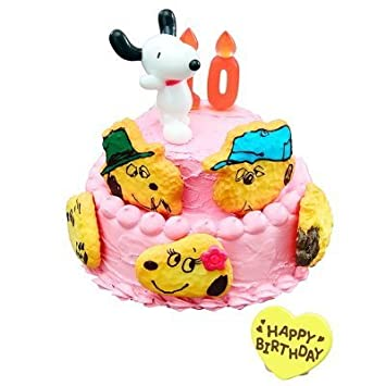 Super Re Ment Peanuts Snoopys Birthday Cake 7 Snoopy Belle And Personalised Birthday Cards Paralily Jamesorg