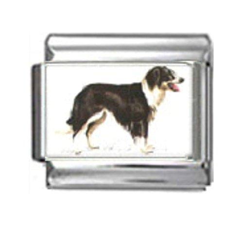Stylysh Charms Border Collie Dog Photo Italian 9mm Link DG085