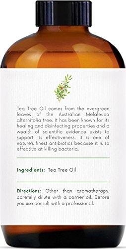 Handcraft TeaTree Essential Oil - 100 Percent Pure and Natural - Premium Therapeutic Grade with Premium Glass Dropper - Huge 4 oz
