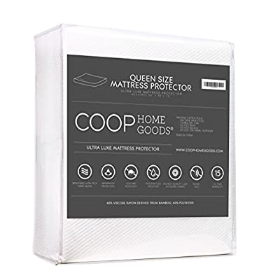 Ultra Luxe Bamboo derived Viscose Rayon Mattress Pad Protector Cover by Coop Home Goods - Cooling Waterproof Hypoallergenic Topper- Queen - White (Queen)