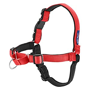 Petsafe Deluxe Easy Walk Harness, Small, Rose Pink