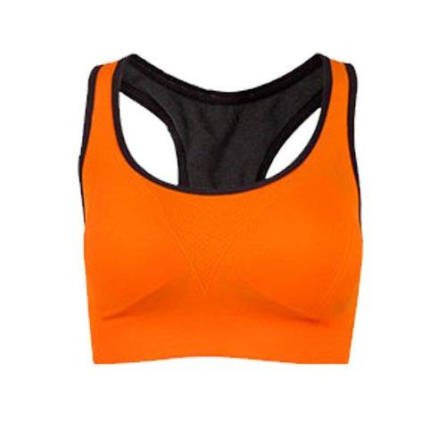 Women Absorb Sweat Vest Sports Gym Shaped Bra Back No Wheels Wireless Sports Bra (Size L)