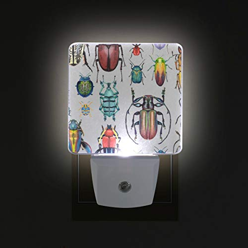 - Beetle Insect LED Night Lights with Auto Dusk to Dawn Sensor, Plug-in Warm White Wall Lights for Kids Room
