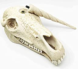 Ancient Treasure Unicorn Skull Fossil Figurine Skeleton Findings Great Gift For Archeologists Excavation Adventures Collector Sculpture