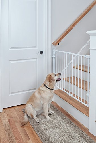 41QkWV0U2FL Safety 1st Ready to Install Baby Gate (White)    Create child-friendly spaces in your home with the Safety 1st Ready to Install Baby Gate. This sturdy baby gate can be opened with one hand and adjusted to fit doorways and openings ranging from 29 to 42 inches wide. This baby gate comes fully assembled for quick and trouble-free installation for a flat mounting surface at least 3.5 inches wide. The innovative design requires no drywall anchors and can be installed with a single screwdriver in just 15 minutes. The baby gate's no-threshold design removes the risk of tripping for extra safety when mounted at the top of a staircase. Easily create a safe space for children in your home by using this 30-inch-high adjustable baby gate in doorways, hallways, staircases, and more. Includes one baby gate. JPMA-certified baby gate meets ASTM standards for safety and includes a one-year limited warranty. Safety 1st believes parenting should have fewer worries and more joyful moments. As the first and only leader in child safety, Safety 1st is here to give you peace of mind so you can spend less time worrying and more time enjoying every first you experience with your child. Gate swings shut easily