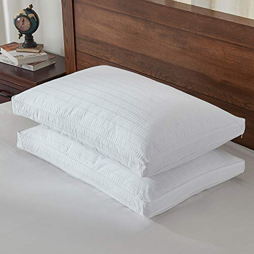Basic Beyond Goose Down Feather Pillow - 2 Pack Luxury Gusseted Bed Pillows for Sleeping, Include 500TC 100% Cotton Pillow Protectors, YKK Zipper, Queen Size