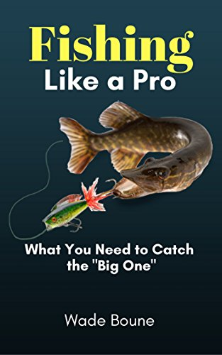Fishing Like a Pro: What You Need to Catch the