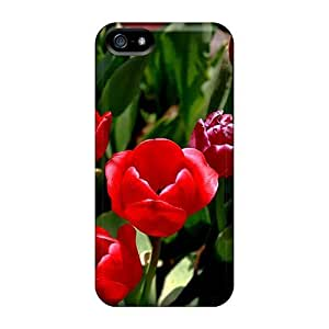 Iphone 5/5s Hard Back With Bumper Cases Covers July Delicacies