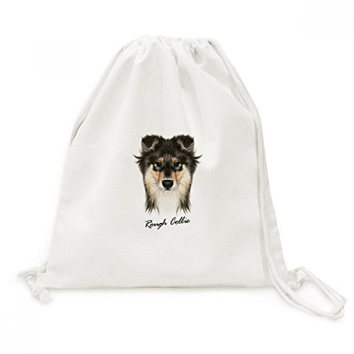Long-haired Rough Collie Pet Animal Canvas Drawstring Backpack Shopping Travel Lightweight Basic Bag Gift (Rough Haired Collie)