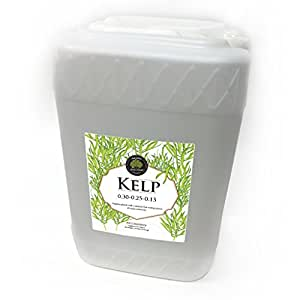 Age Old Organics 1K6GD 0-30-0.25-0.25 Kelp Liquid Fertilizer, 6-Gallon Bottle