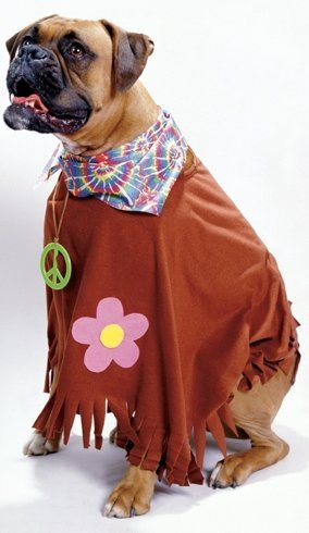 Hippie Dog Costume - Pet Costume -