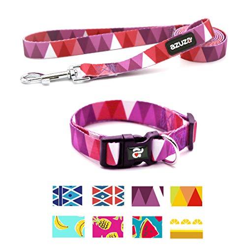 azuza Dog Collar and Leash Set, Adjustable Nylon Collar with Matching Leash,Purple Flag,Small (Puppy Collar Dog Nylon)