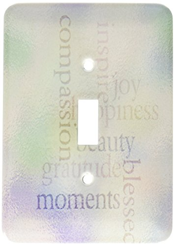 3dRose lsp_37933_1 Joy and Gratitude Stained Glass-Inspirational-Motivational Single Toggle Switch