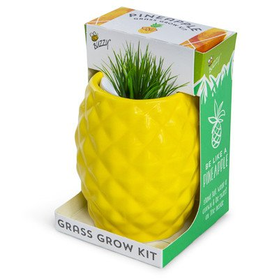 BUBBLES Spring Garden Mini Grow Your Own Pot Kit Instant Plant Seeds Plant Outdoor & Indoor GRASS PINEAPPLE SHAPED POT