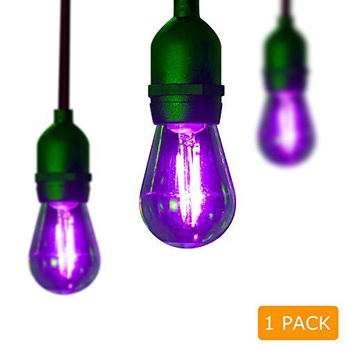 Outdoor Purple Light Bulbs in US - 4