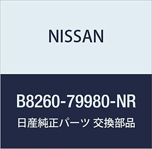 NISSAN(ニッサン) 日産純正部品 2DINテレビ&ナビゲー B8260-79980-NR B01MTLUPU1