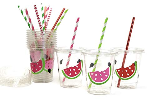 (Watermelon Birthday Party Cups 12 oz Disposable Plastic Lids Straws (12 Count) )