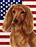 Cheap Best of Breed Dachshund (Long Haired, Red): Indoor/Outdoor House Flag (Patriotic II Series).