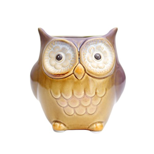WAIT FLY Cute Owl Shape Pen Stand Holder Pencil Pot Holder Organizers for Office Desk (Shape Pen Stand)