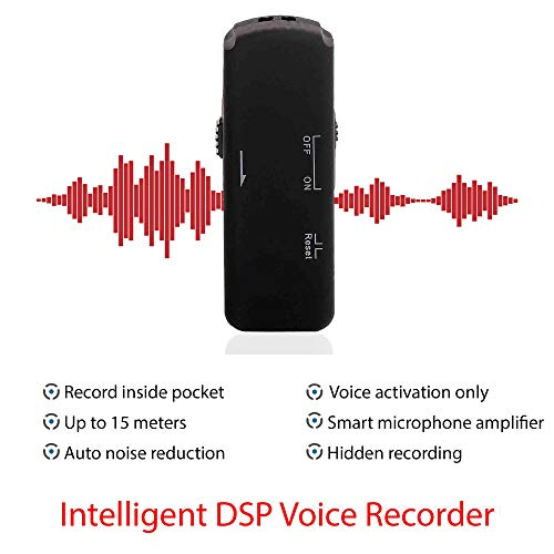 Professional USB Stick Voice Recorder with Crystal Clear Sound, Remote Recording Digital Voice Recorder, Voice…