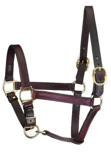 (Perri's Horse Track Style Leather Turnout Halter/Adjustable Chin, Havana)